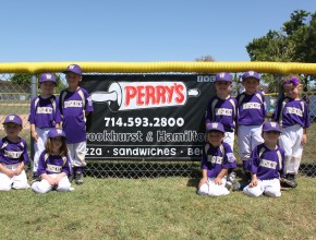 Perry's Pizza banner with kidss